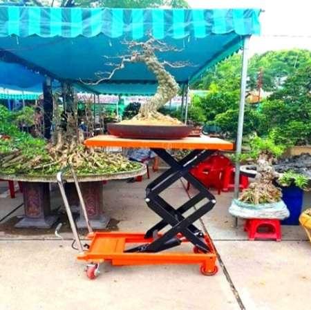 ban-nang-chau-canh-500-kg