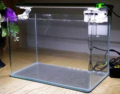bể kính thủy tinh