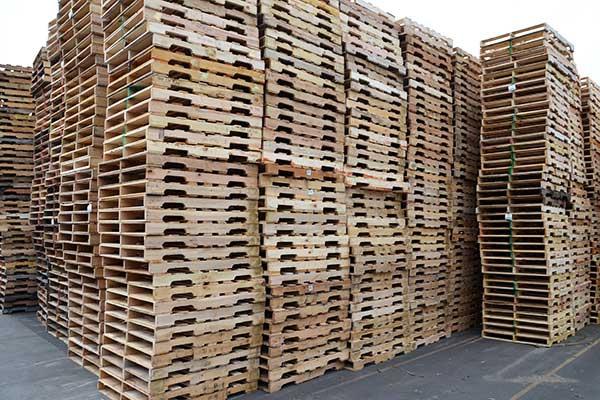 cung cấp pallet gỗ sỉ lẻ toàn quốc