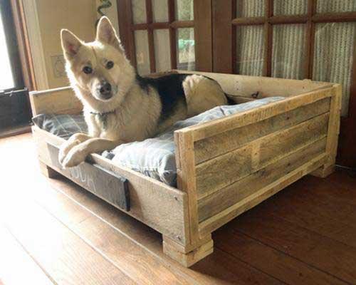 nhà thú cưng gỗ pallet