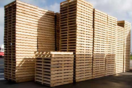 pallet gỗ giá siêu rẻ toàn quốc