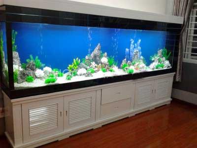 tủ gỗ thủy sinh đẹp